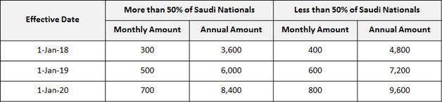 Saudi Company Levy – Fees for expatriate employees